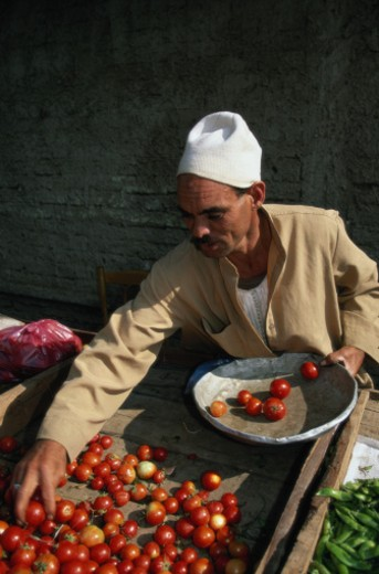 Stock Photo: 1598R-118927 Man Selling Tomatoes