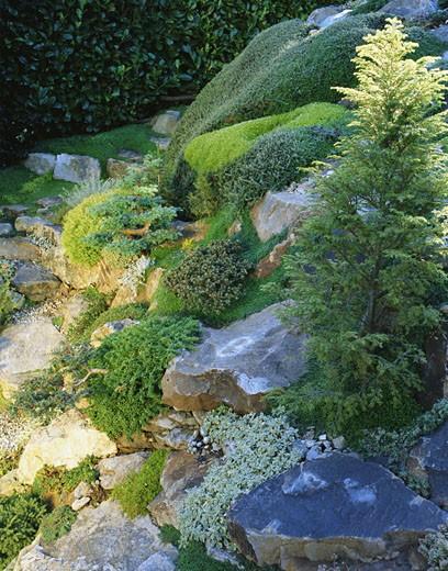 Stock Photo: 1598R-122605 Rock Garden