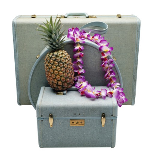 Travel Luggage and a Pineapple : Stock Photo