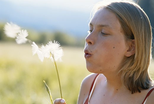Young woman blowing seeds off dandelion : Stock Photo