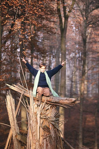 Stock Photo: 1598R-141662 Boy (8-11) sitting on top of damaged tree, showing victory sign