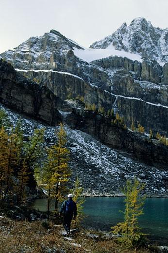 Man hiking, Canadian Rockies, Alberta : Stock Photo
