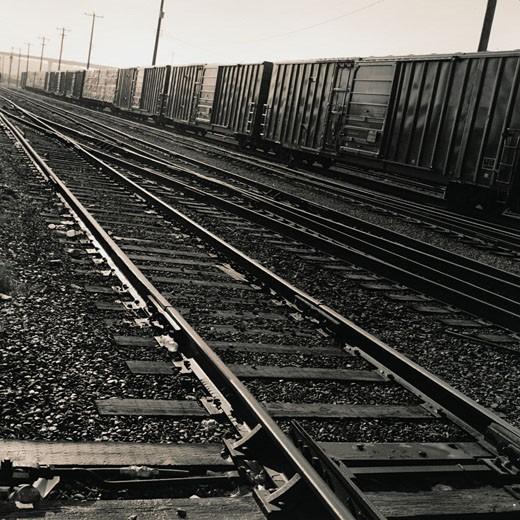 Railroad Tracks in a Railroad Yard : Stock Photo