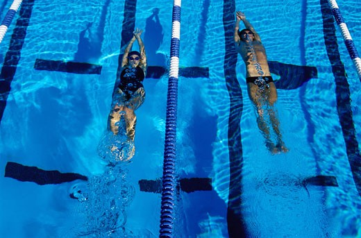 Swimmers Underwater in Pool : Stock Photo