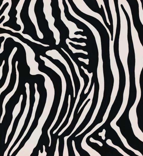 Stock Photo: 1598R-152662 Zebra Pattern