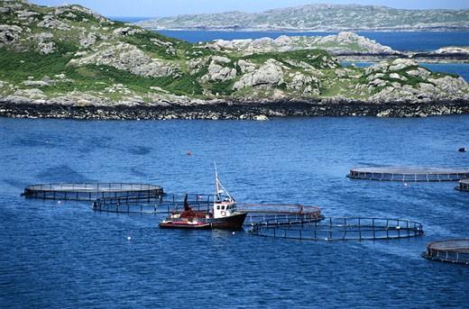 Stock Photo: 1598R-153619 Fishing Boat