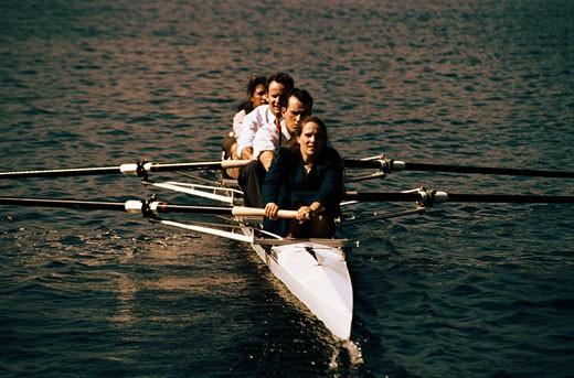 Businesspeople Rowing : Stock Photo