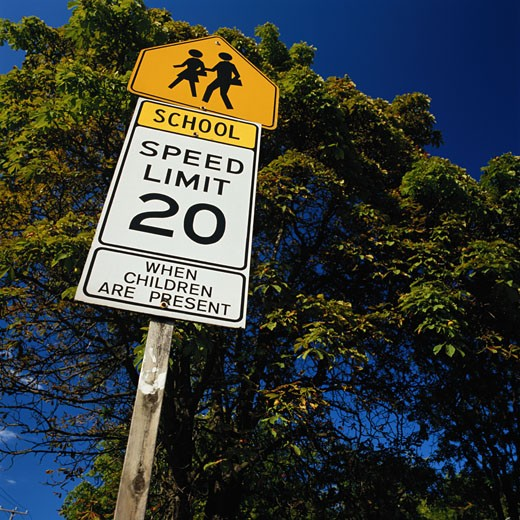Stock Photo: 1598R-165384 School Zone Road Sign