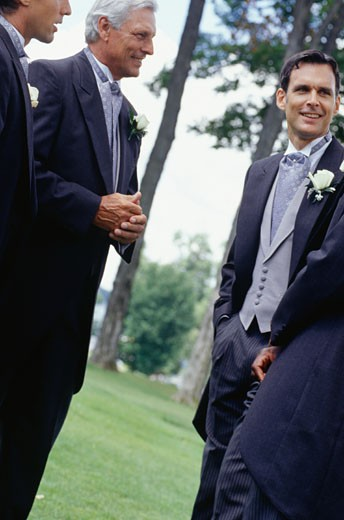 Wedding guests talking, outdoors : Stock Photo