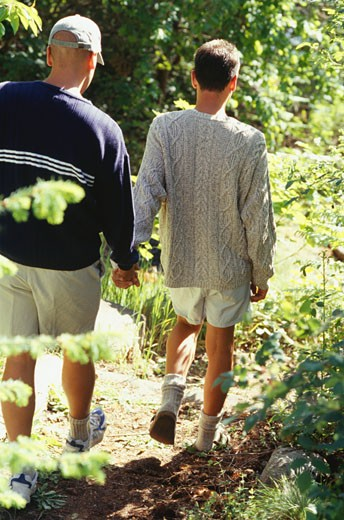 Homosexual couple holding hands, walking through forest : Stock Photo