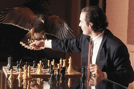 Stock Photo: 1598R-179720 Businessman sitting by chessboard looking at bird on fist