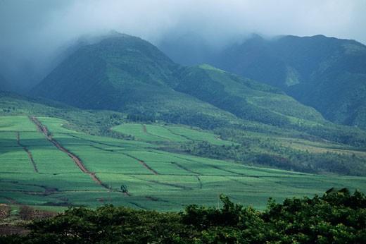 Fog over West Maui Mountains, Maui, Hawaii, USA, elevated view : Stock Photo