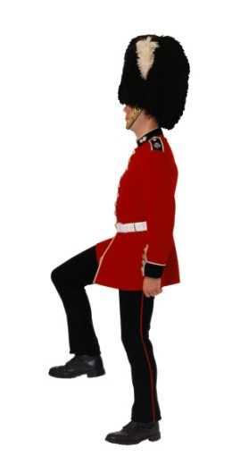 Profile of a Welsh Grenadier Guard : Stock Photo
