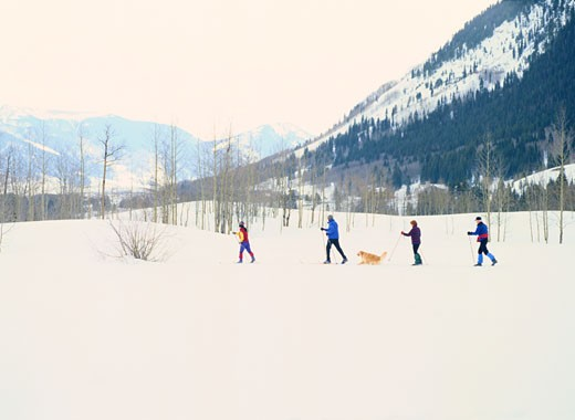 Stock Photo: 1598R-183220 Family Cross-Country Skiing With Their Dog