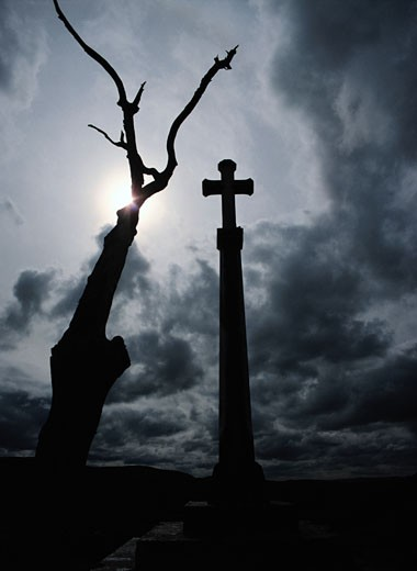 Stock Photo: 1598R-202589 Cross and Dead Tree