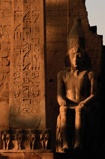 Statue of Ramses II in Luxor, Egypt : Stock Photo