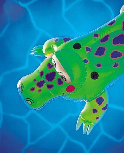 Inflatable alligator floating in swimming pool : Stock Photo