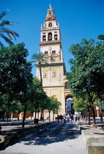 Low angle view of La Mezquita Mosque and Cathedral, Cordoba, Spain : Stock Photo