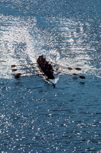 Rowers in a boat race : Stock Photo
