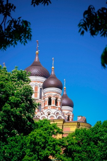 Stock Photo: 1598R-213858 Low angle view of the domes of St. Alexander Nevski Cathedral, Tallinn, Estonia