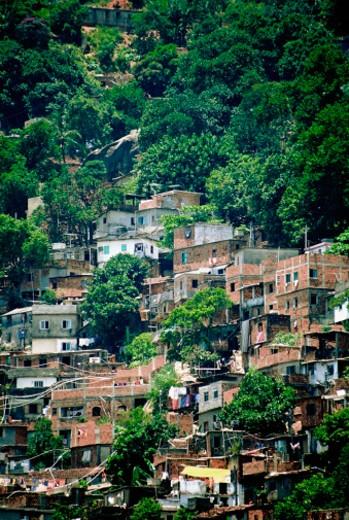 Stock Photo: 1598R-213930 High angle view of shacks, Favellas, Rio de Janeiro, Brazil
