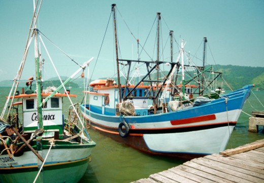 Fishing boats at a harbor, Paraty, Brazil : Stock Photo