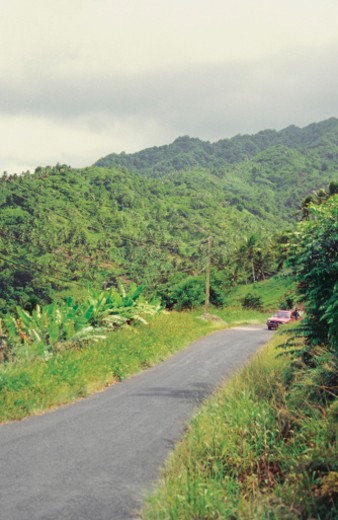 Stock Photo: 1598R-218358 Deserted country road, Carib Territory, Dominica, Caribbean