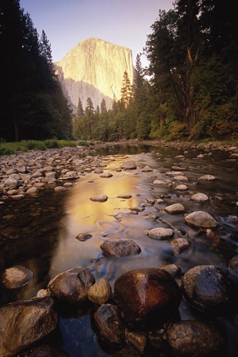 USA, California, Yosemite National Park, El Capitan and Merced River : Stock Photo