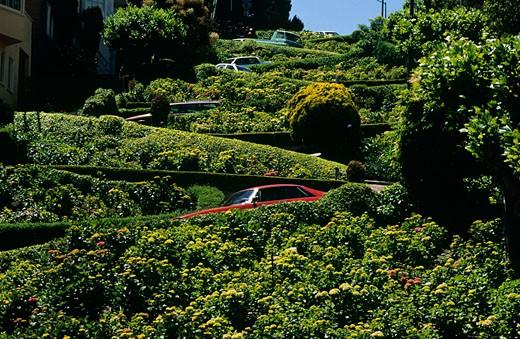 Stock Photo: 1598R-226787 USA, California, San Francisco, Cars on Lombard street