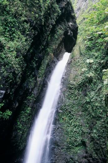USA, Hawaii, Oahu Sacred Falls : Stock Photo