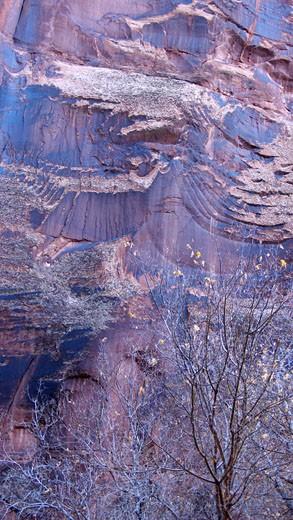 USA, Utah, Moab, Negro Bill Canyon, Rock face : Stock Photo