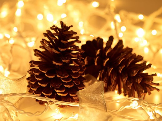 Stock Photo: 1598R-240136 Two pine cones amongst Christmas lights, close up