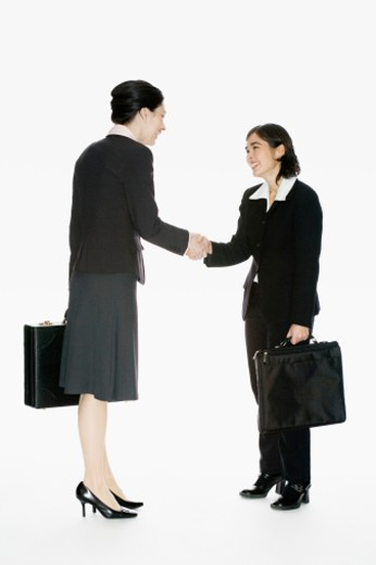 Two business women with briefcases, shaking hands : Stock Photo