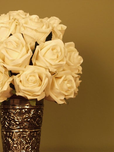 Close-up of White Roses in a vase : Stock Photo