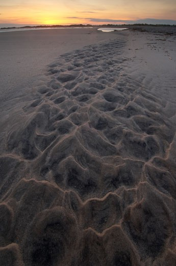 New Jersey, Cape May, sand patterns : Stock Photo