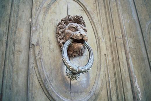 Lion Knocker On Door : Stock Photo