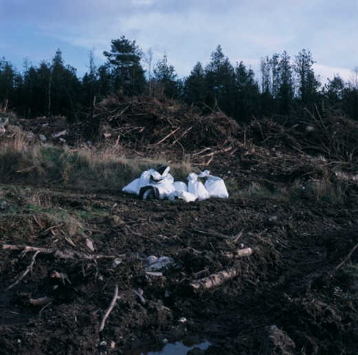 Garbage Bags in Field : Stock Photo