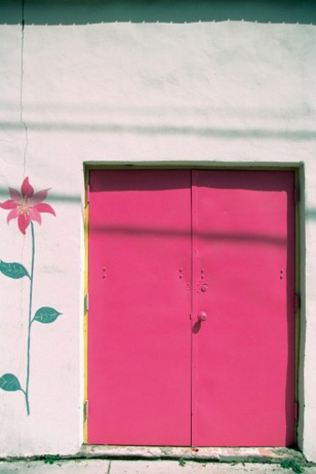 Pink flower painted on the wall of a house with pink door, Key West, Florida, USA : Stock Photo