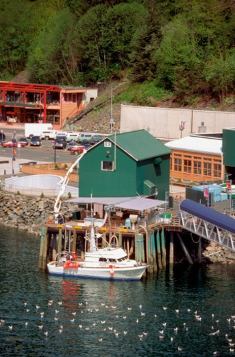Stock Photo: 1598R-267278 High angle view of fishing boats docked at a harbor, Juneau, Alaska, USA