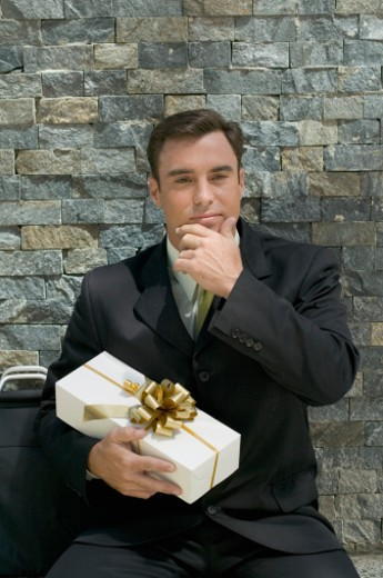 Portrait of a mid adult businessman : Stock Photo