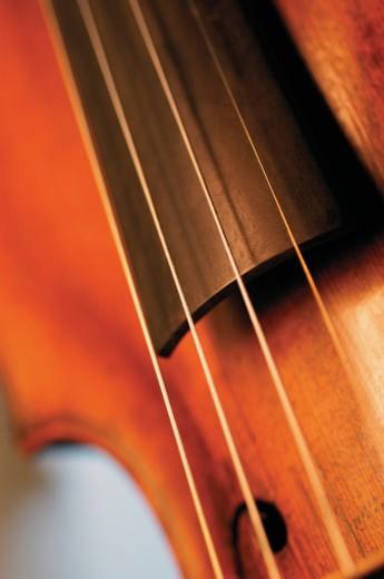 Extreme close-up of violin bridge : Stock Photo