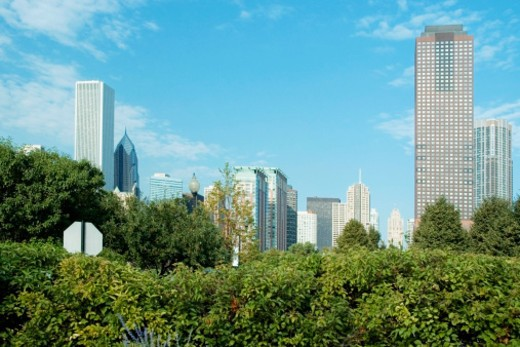 Stock Photo: 1598R-271899 Trees in front of buildings in a city, Downtown Chicago, Chicago, Illinois, USA