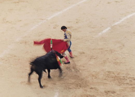 Stock Photo: 1598R-280598 Matador fighting bull