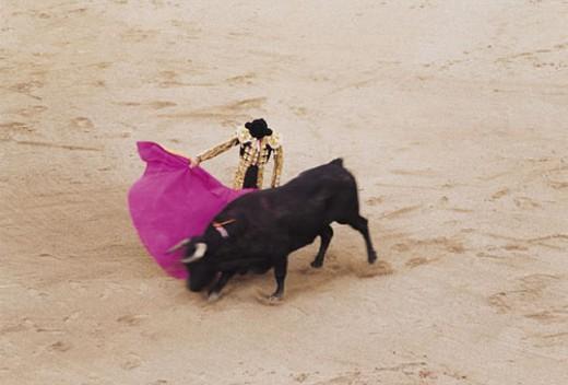 Stock Photo: 1598R-280599 Matador fighting bull