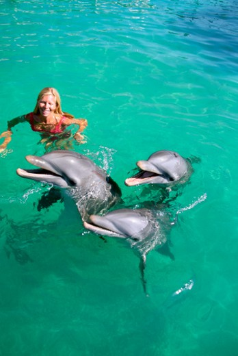 Mexico, Isla Mujeres, Woman playing with dolphins : Stock Photo