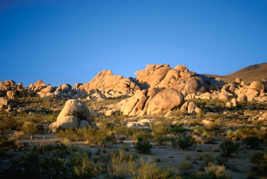 USA, California, Joshua Tree National Monument, Rock formation in a landscape : Stock Photo
