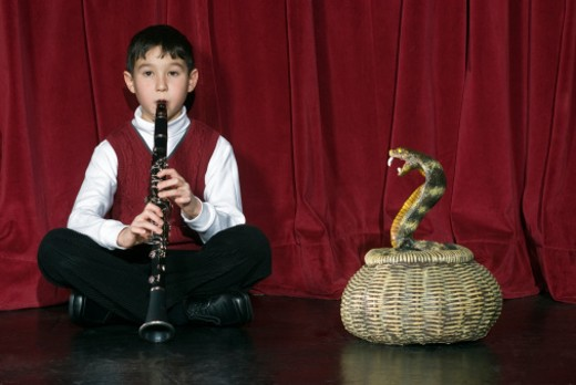 Boy (8-9) playing clarinet on stage charming snake : Stock Photo