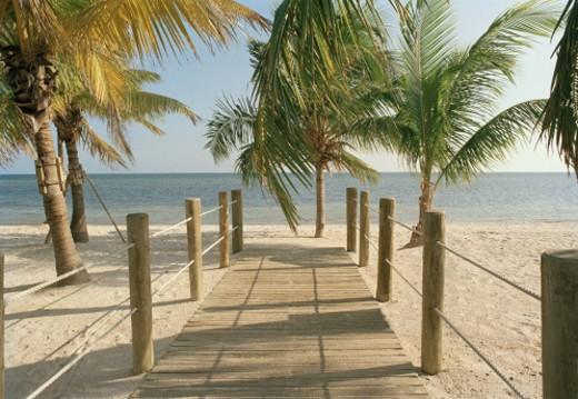 USA, Florida, Key West, boardwalk leading toward ocean : Stock Photo
