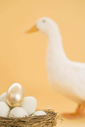 Stock Photo: 1598R-36955 Golden egg on basket, duck in background