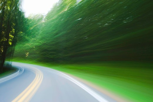 Tree lined road (blurred motion) : Stock Photo